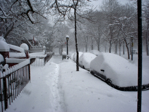 City-snow